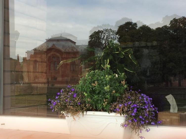Чим ужгородці прикрашають свої балкони?