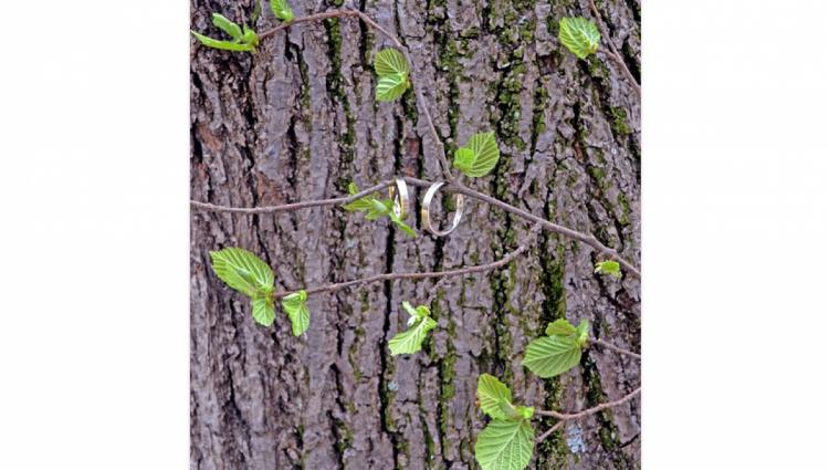 На пять лет совместной жизни принято дарить изделия из дерева